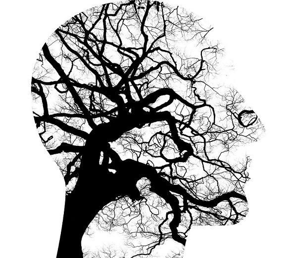 Mental health brain